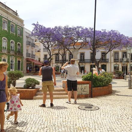 Lagos Square Algarve Villa Rentals