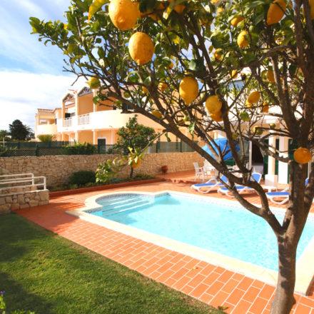 Sossego Pool Lemon Tree Algarve Villas Luz